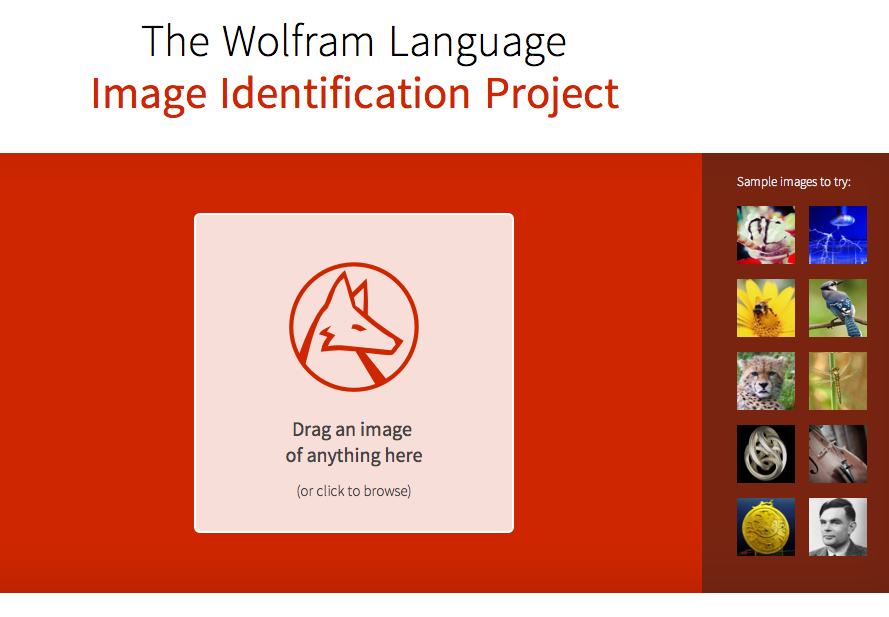 Screenshot der Wolfram Image Identification Webseite